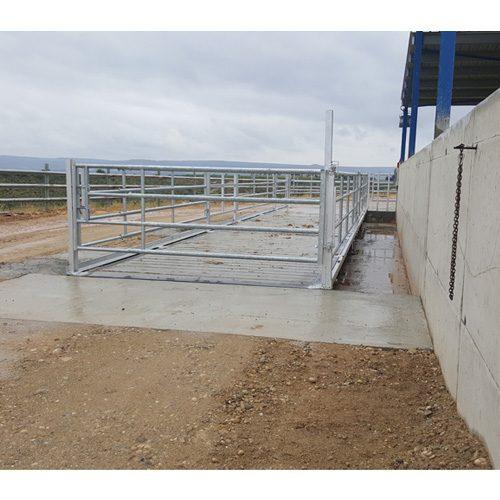 Báscula-puente-mixta-para-el-pesaje-en-conjunto-de-animales-vivos-y-camiones